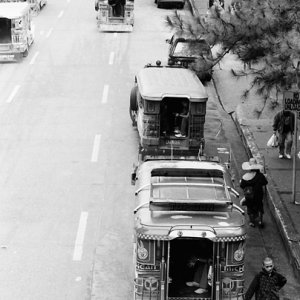Jeepneys parked beside park