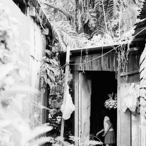 Figure in hut