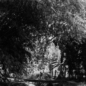 Figure crossing small bridge