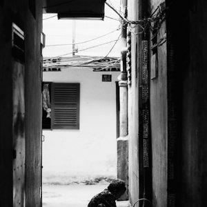 薄暗い路地で家事をする人影