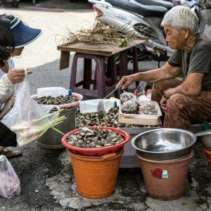 蛤を売る女性