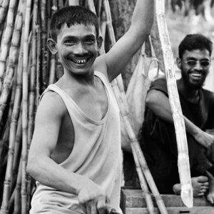 楽しそうに竹を切る男