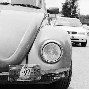 Car registration plate of beetle