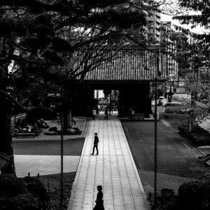 参道の人影