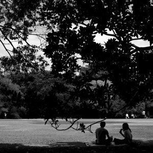 木陰に座るカップル