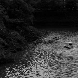 乾濠のボート