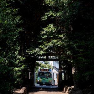 渋谷氷川神社の鳥居の向こうのバス
