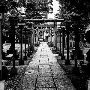 Approach way of Senju Jinja