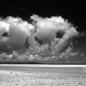 コンドイ浜の浅瀬を歩く人影