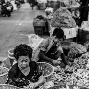 生姜の山の中で働く女