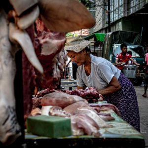 Heads of pig hung in butcher