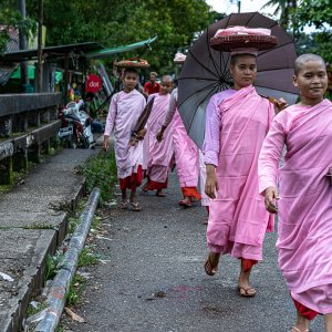 Buddhist nuns walking together