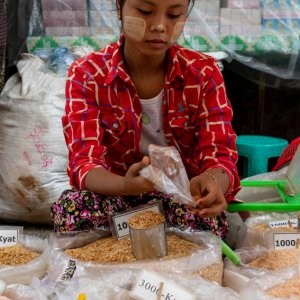 Young woman selling dried shrimps
