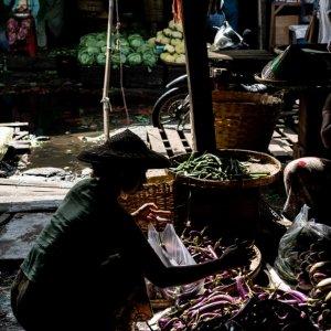 Eggplants in Da Nyin Gone Market