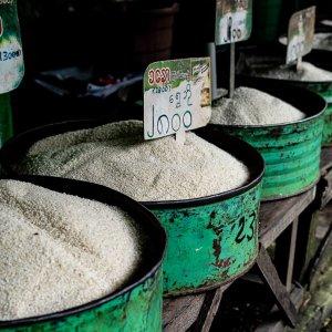 店頭に並べられた幾つもの種類のお米
