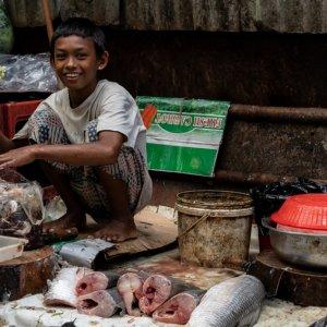 Boy selling fishesl