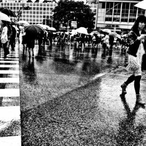 Woman walking scramble crossing