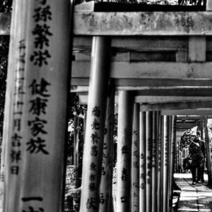 Umbrella walking through Torii