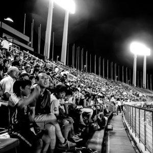 Stand in stadium