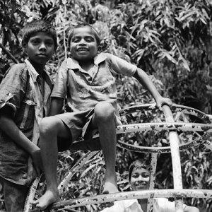 ジャングルジムの登っていた男の子たち
