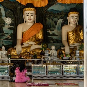 Woman sitting in front of many Buddha statues