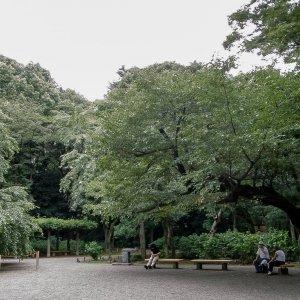六義園の木の下で休む人々