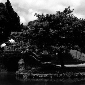Three umbrellas on stone bridge in Shikinaen garden