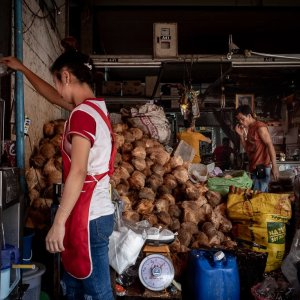 Heap of coconuts in Khlong Toei Market