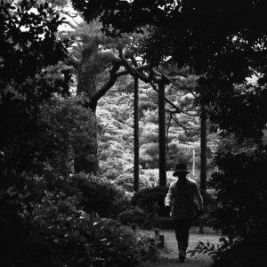 小径を歩くシルエット