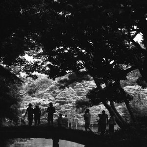 Many silhouettes on bridge in Rikugien garden