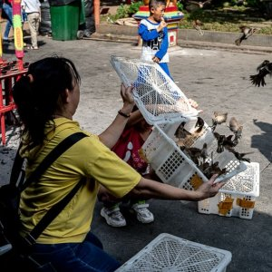 Ritual of releasing birds taking place in the precinct of Jin De Yuan