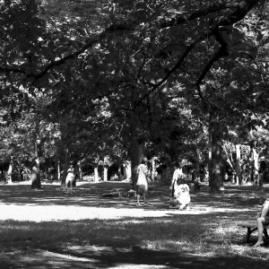 Young woman reading book in Yoyogi park