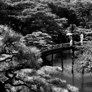 偃月橋を渡るカップル