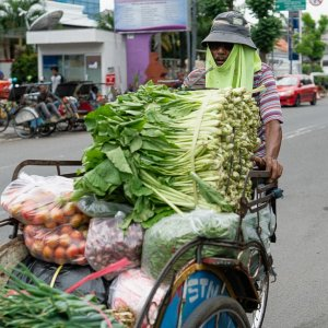 Becak carrying vegetables