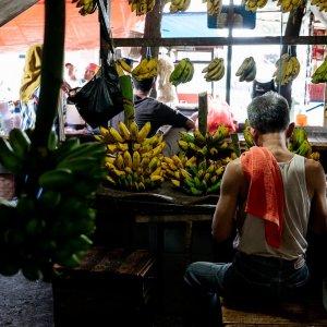 カノマン市場のバナナ専門店
