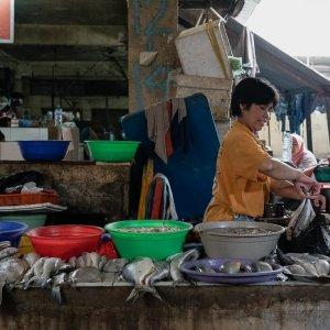 カノマン市場の魚屋