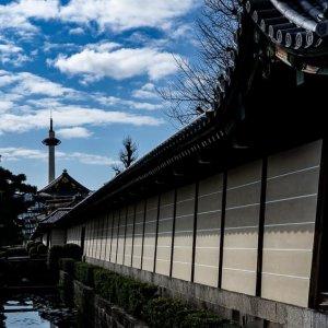 堀に写り込んだ京都タワー