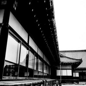 Ninomaru Palace of Nijo Castle