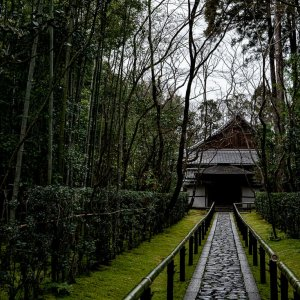 Approach to Kotoin Temple