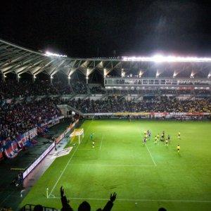 Crowd in stadium