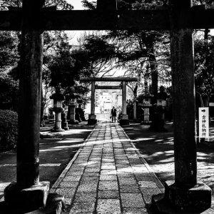 品川神社の鳥居と参拝客