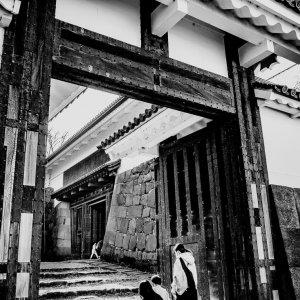 Shimizu-mon Gate