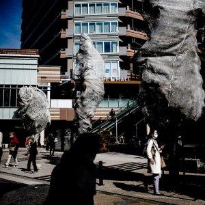 カバーで覆われた街路樹
