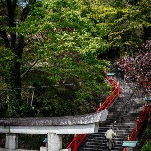 Otoko-zaka Staircase of Ashikaga Orihime Shrine