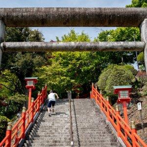 織姫神社の石段を駆け上がる高校生