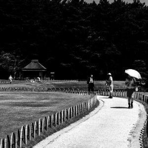 小径の上の日傘