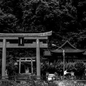 千代稲荷神社の鳥居