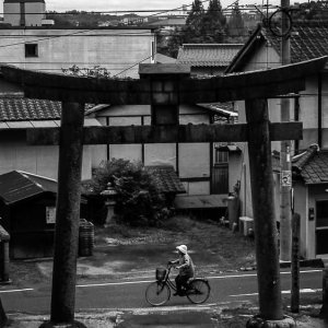 Bicycle passing by the torii of Tsuruyama Hachiman-Gu