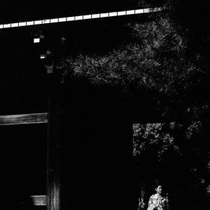 明治神宮の門から出てきた女