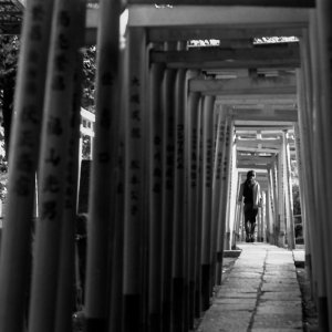 Woman walking through Torii